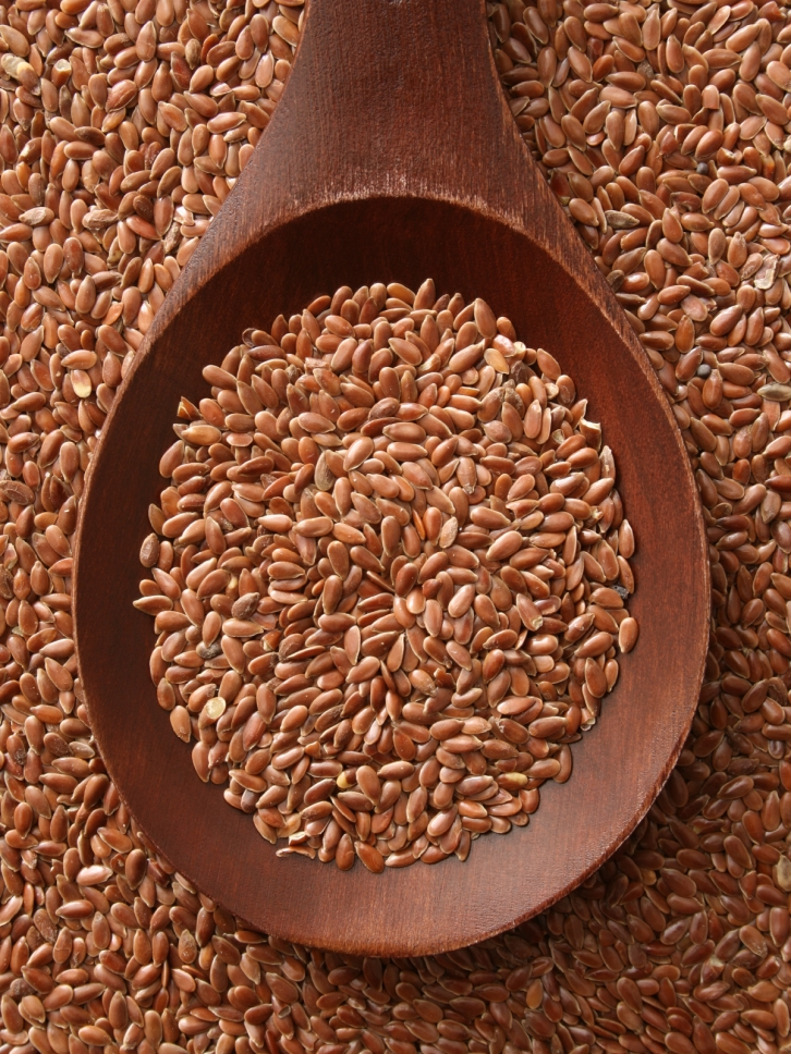 Flax seeds soaked in water is a good substitute for eggs.