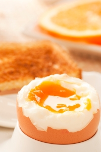 Soft boiled egg with toasted bread and slices of oranges in the back. Shallow depth of filed.