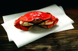 Raw Alaska Dungeness Crab